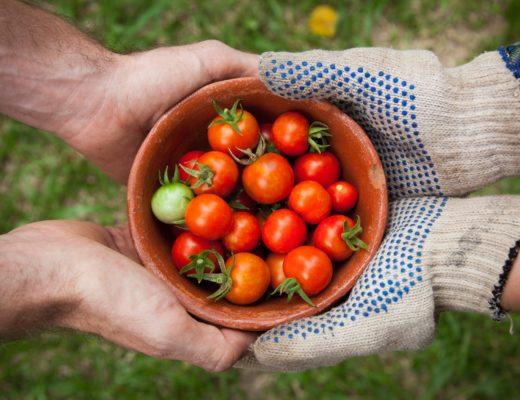 Les fruits et légumes du mois de juillet